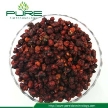 Medicinal Herbs dried Schisandra berries fruit