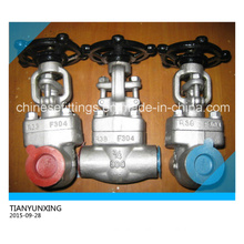 Solid Wedge Forged Stainless Steel Threaded Gate Valve