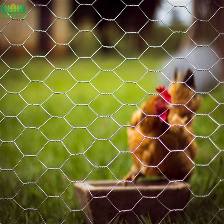 Hexagonal+Wire+Mesh+Chicken+Netting