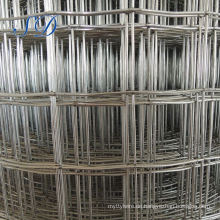 "18 Gauge Pvc Coated 1/2 ""Galvanized Welded Wire Mesh"