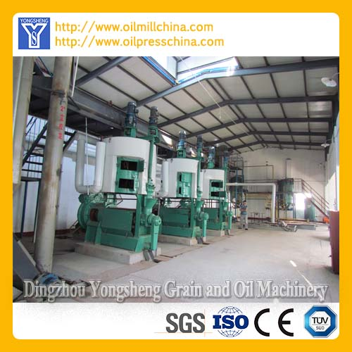 Sunflower Oil Pressing Expeller