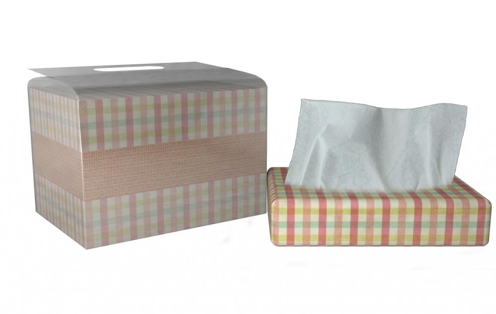 Kitchen Paper in paper box
