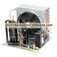 Unité de réfrigération frigorifique R22 R404A de petites installations de réfrigération