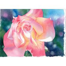 Flower photos Oil Painting On Canvas