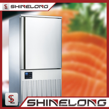 Réfrigérateur profond 280L de réfrigérateur de Balst de réfrigérateur de Balst de porte d'acier inoxydable de restaurant commercial