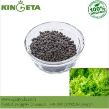 Agro Humic Acid Carbon Slow Release Engrais