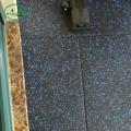 лучший резиновый пол для спортзала на продажу