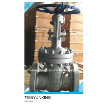 A216 Wcb API 6D Z41 Guss Carbon Stahl Schieberventile