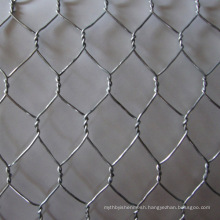 High quality cheap chicken wire mesh /hexagonal wire mesh