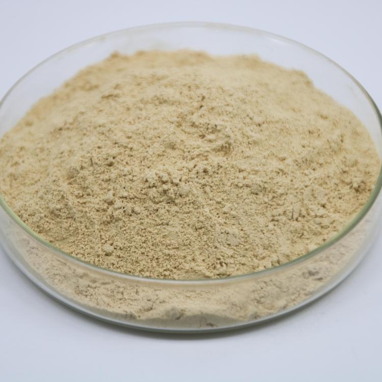 Ginseng Light Yellow Powder