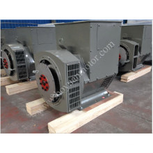 Permanent Magnet Brushless Home Electric Generator 6kw~600kw