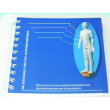 Los Meridianos y Acupoint Pocket Breve Manual de Introducción