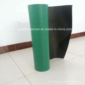 Geomembrane HDPE imperméable à l'eau