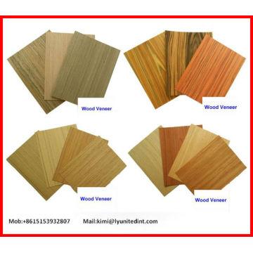 Chapa de madera de la ingeniería de Furnoture / Door