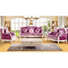 Диван / гостиной диван с деревянной рамкой софы (992C)