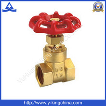Brass Control Gate Water Valve with Iron/Aluminum Handle (YD-3006)