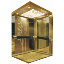 Pequeño ascensor del hogar Elevador del hogar