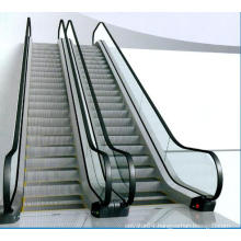 Qualified Passenger Conveyor of Low Noise (VVVF Drive)