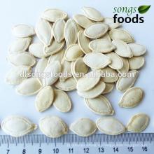 Nombres de semillas comestibles en China