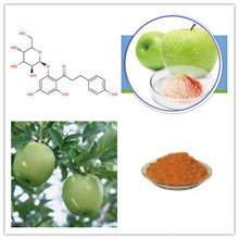 Apple Root Extract Phloridzin 40%, 60%, 95%, 98%