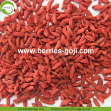 Good Quality for Sale Kurutulmuş Konvansiyonel Goji Berry