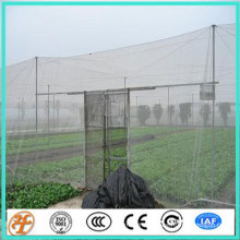 wholesale factory supply wire mesh garden anti-insect screens