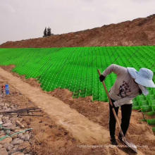 PP HDPE plastic black green brown texture smooth perforated non-porous geogrid