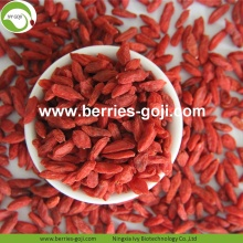 Factory Wholesale Dry Fruit Super Food Wolfberry