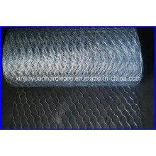 Filetage en fil hexagonal galvanisé / revêtu de PVC / acier inoxydable