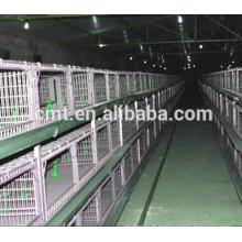 système automatique d'abreuvoir de poulet de prix usine pour la cage de volaille