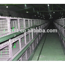 factory price automatic chicken waterer system for poultry cage
