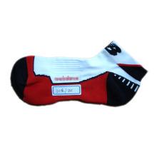 Frauen laufen Sport Socken mit Coolmax für Outdoor (ocs-01)