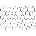 PVC Coated Hexagonal Mesh