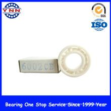 Using Electronic Equipment Ceramics Bearing Ball (6002 CE)