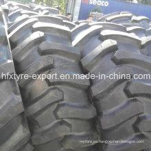 LS-2 neumáticos para Skidder 23.1-26, 24.5-32, 28L-26 forestal neumático con los mejores precios