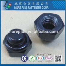 Fabriqué en Taiwan Zinc Plating CR3 + 48Hours SST à Red Rust Type NKE Nylon Stop Nut avec Black Nylon Cap