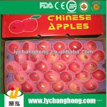 Frisches Obst / Apfelfrucht / chinesische Früchte