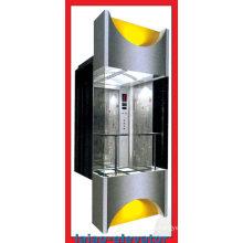 Обзорный лифт Vvvf & Mrl