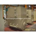AC Sychronous Brushless Alternators (4503-6 450kw)