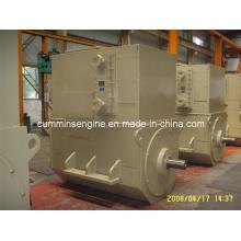 Асинхронные бесщеточные генераторы переменного тока (4503-6 450 кВт)