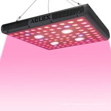 AGLEX 2000W LED Grow Light for Indoor Herbs