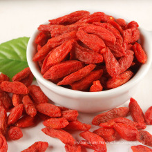 china ningxia Full granules goji berry Full granules Goji Berry