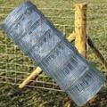 Cheap+galvanized+farm+fencing+field+fence