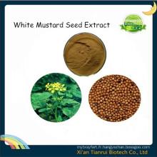 Extrait de graines de moutarde blanche, Extrait de graines de moutarde