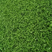 Mini Golf Artificial Artificial Putting Green Grass