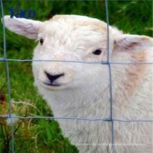 Hochfeste galvanisierte Bauernhofzaundraht- / Bauernhoffechten- / Zaunversorgungen im Porzellan