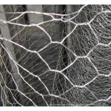 Chicken Wire Mesh/Poultry Wire/Galvanized Hexagonal Wire Mesh