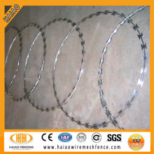 Safety protection and good price galvanized razor wire mesh