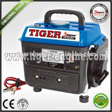 Groupe électrogène TG950DC