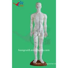 60CM Точка зрения акупунктуры человека, модель человеческого тела иглоукалывания